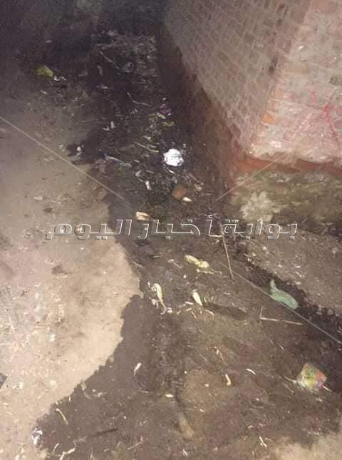 تلوث عزبة المعاشات بمياه الصرف الصحي