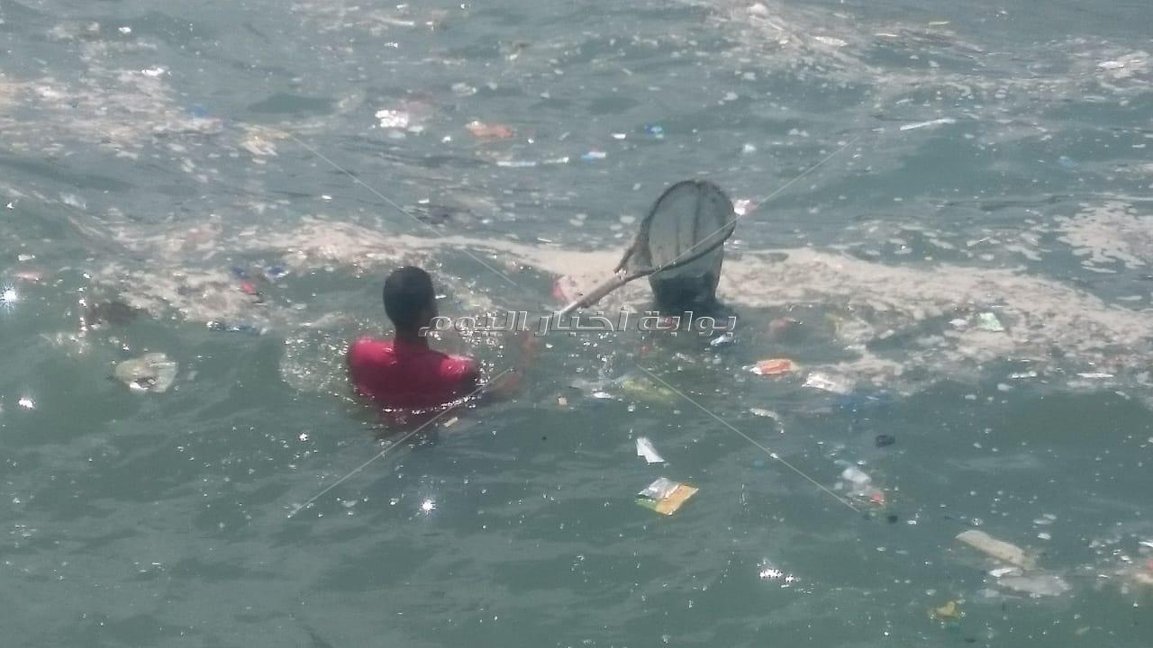 """""""بحر بلا بلاستيك"""" من أجل السلاحف"""