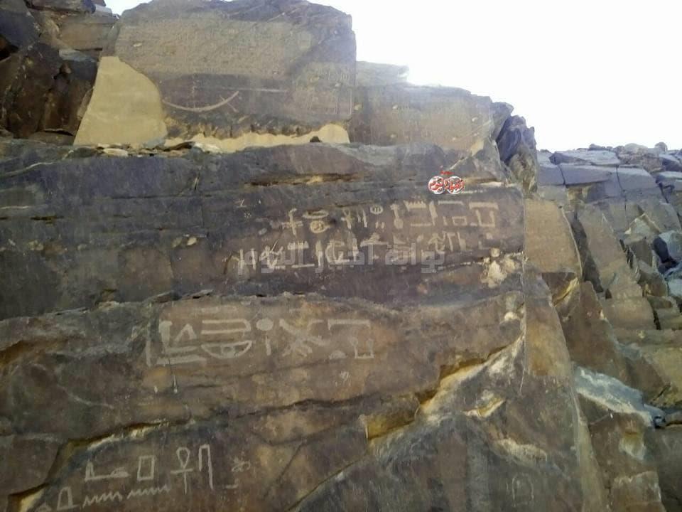 باحث أثري يكشف معجزة «تابوت الفرعون» و«المطر»