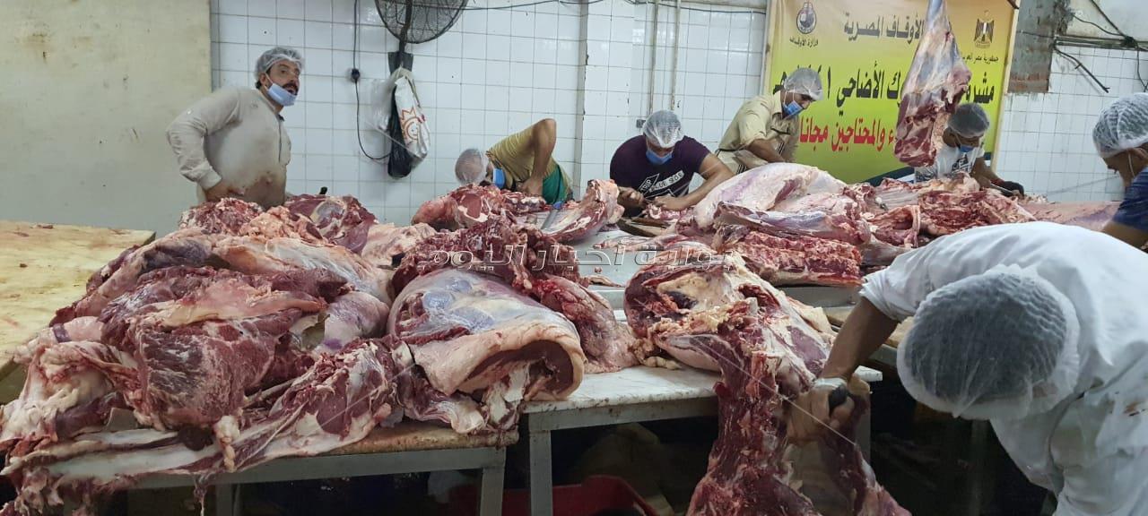 «بوابة أخبار اليوم» في جولة مع الأوقاف بمجزر البساتين من استلام اللحوم وحتى التعبئة