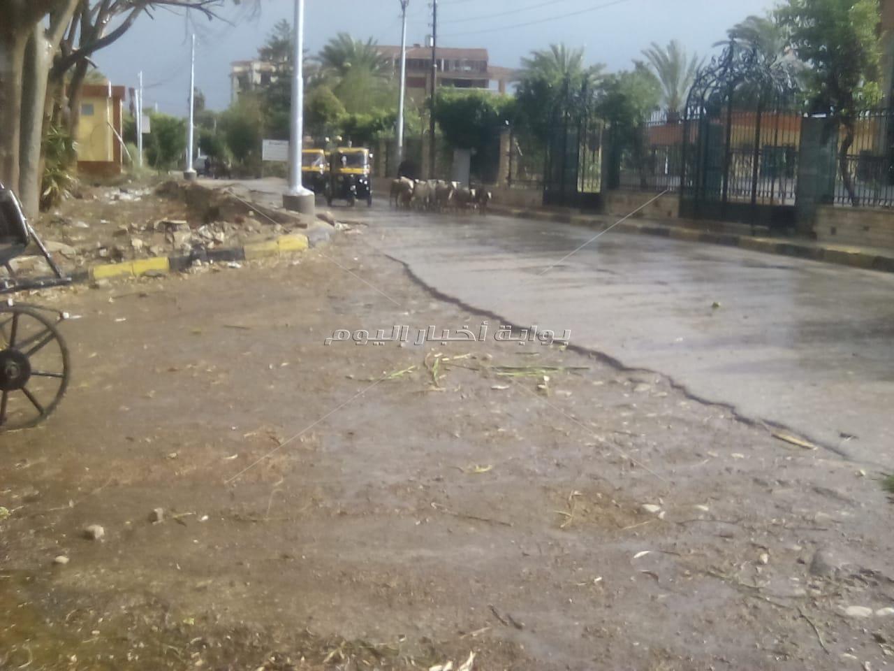 قرية مرجانة بالقناطر الخيرية