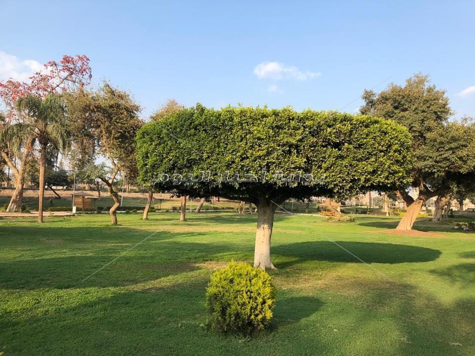 لعشاق الطبيعة والسهر.. حديقة عفله متنفس جديد لأهالي القليوبية