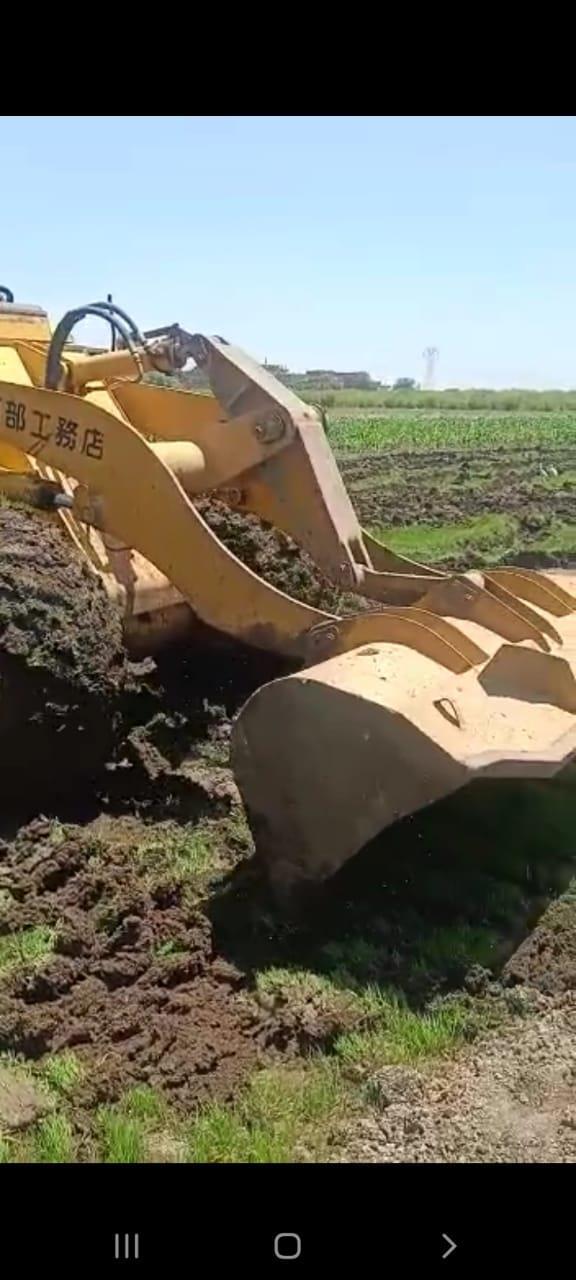 إزالة مشاتل الأرز بالقليوبية لمخالفتها قرار منع الزراعة