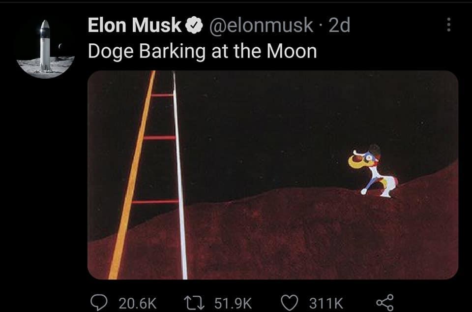 تغريدة لايلون ماسك عن عملة الكلب