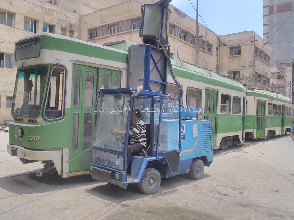 الإسكندرية تجهز الأتوبيس «أبو دورين» والتراملـ كان 2019