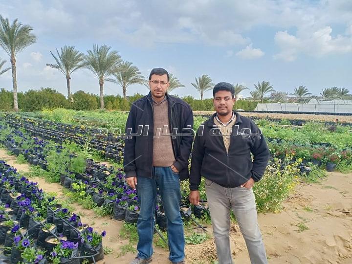«أزاهير» المصرية تقدم: وجبات من الورود المعدة للأكل