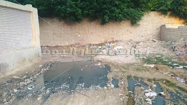 مياه الصرف والقمامة تُعيق وصول الطلبة لمدرسة في الإسكندرية