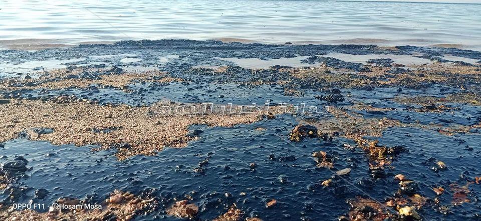 تلوث بترولي بأحد شواطئ رأس غارب شمال البحر الأحمر