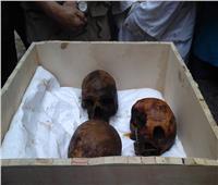 خبير يكشف هوية مومياوات «تابوت الإسكندرية»