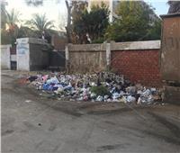 صور  القمامة تغتال مدارس في القاهرة قبيل بدء العام الجديد