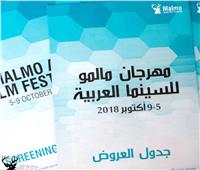 ٩ أفلام مصرية تشارك في مهرجان «مالمو للسينما العربيه»