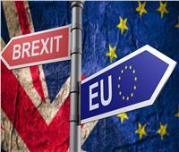 الاستفتاء الثاني.. بين المطالب والترجيحات لرسم مستقبل بريطانيا مع الاتحاد الأوروبي