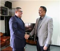 سفير مصر في أديس أبابا يلتقي وزير الخارجية الإثيوبي