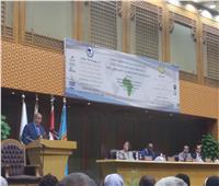 المحرصاوي: الأزهر يعمل على نشر الدين الوسطي