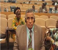 «وهب الله» من الجزائر: نحتاج إلى إنشاء منظمة للعمل الإفريقي