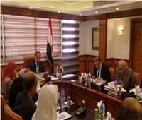 341 مليون جنيه إيرادات النشاط الأساسي لشركة المستودعات المصرية العامة