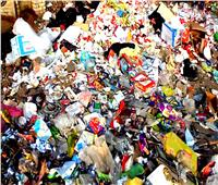 رفع 5 آلاف طن مخلفات خلال أيام المولد بطنطا