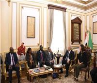 رئيس جامعة القاهرة يلتقي وفد وكالة الفضاء الافريقية