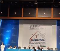 ياسمين فؤاد: الرئيس السيسي حريص على دمج البيئة ضمن أجندة مصر للتنمية
