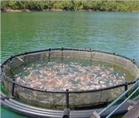 «الإداري» يرفض دعَوى انتفاع شركة استزراع أسماك بالإسكندرية
