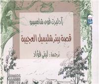 «القومي للترجمة» يحتفل بصدور الطبعة العربية من قصة «بيتر شليمل العجيبة»