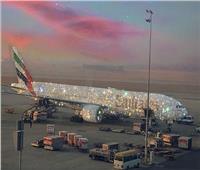 القصة الكاملة لطائرة الخطوط الإماراتية المرصعة بالألماس| صور