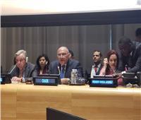 شكري يلتقي الممثلة العليا للأمم المتحدة لشؤون نزع السلاح