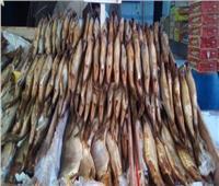 ضبط 64 قضية منها 1.5 طن «رنجة وفسيخ» قبل طرحها بالأسواق