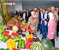 خبراء الاقتصاد الزراعي: «الزراعات المحمية» حلم يتحقق على أرض الواقع