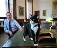 حكايات| الجاسوس بالمرستون.. أشهر «دبلوماسي» يحمي الخارجية البريطانية