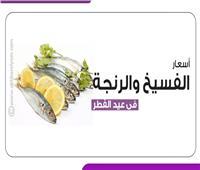 إنفوجراف   أسعار الفسيخ والرنجة في عيد الفطر