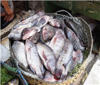 أسعار الأسماك بسوق العبور في عيد الفطر المبارك