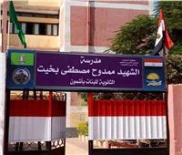 أعلام مصر تزين «أشمون» بمناسبة العيد القومي للمنوفة  صور