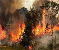 حرائق هائلة بمحافظة عكار شمالي لبنان والصليب الأحمر يدفع بـ 9 فرق انقاذ