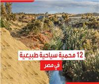 من وادي دجلة إلى رأس محمد.. 12 محمية طبيعية في مصر  فيديوجراف