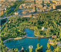 50 مليار شجرة لإنقاذ الكوكب.. ما هي مبادرة الشرق الأوسط الأخضر؟