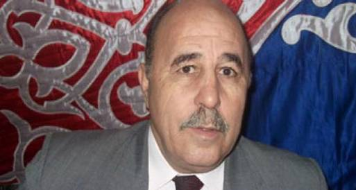 محافظة شمال سيناء تحتفل بذكرى انتصارات أكتوبر
