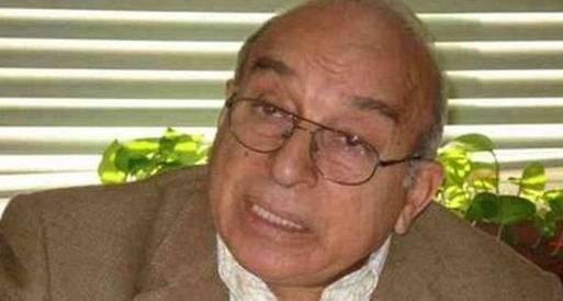 هويدي: الدستور لا يحمل بصمات إيرانية تركية