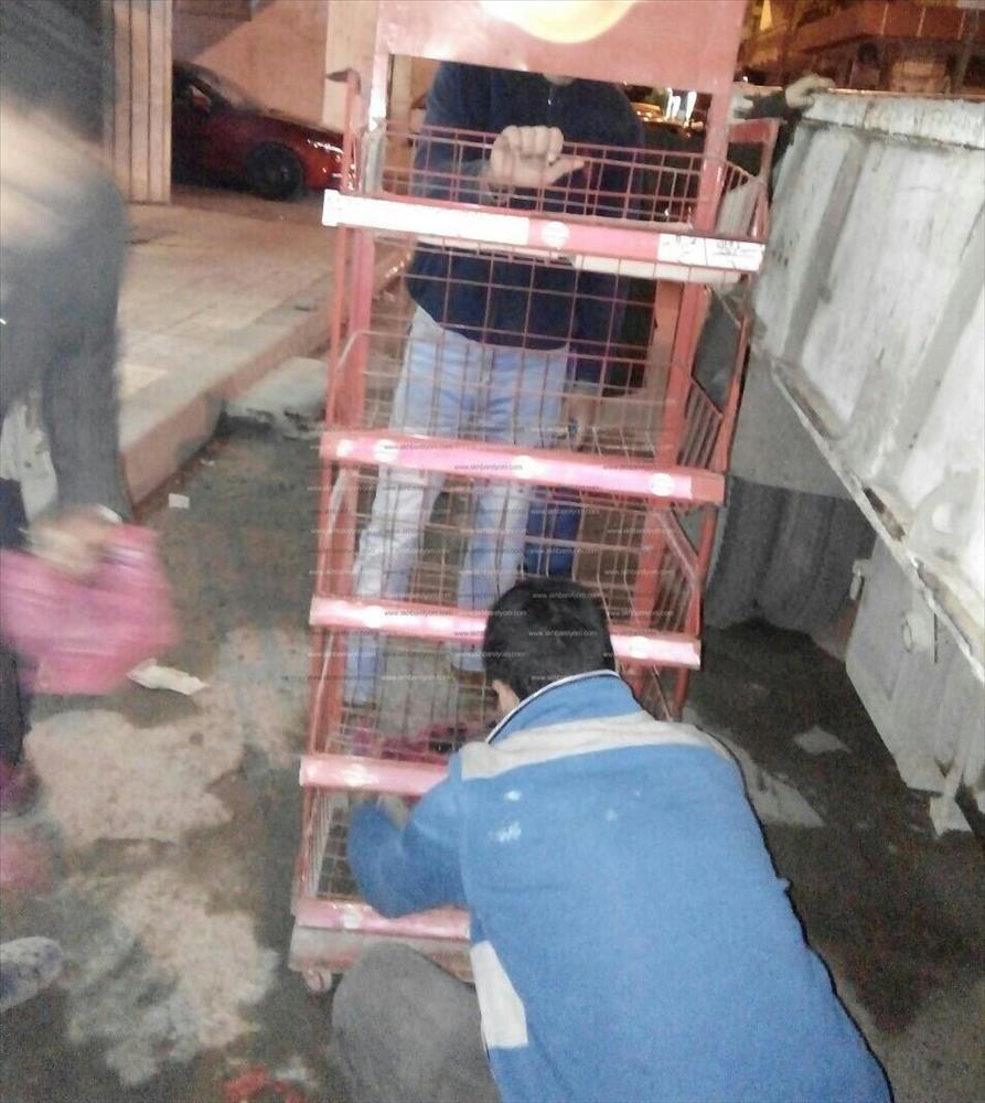 حملات لإزالة الإشغالات بحي شرق الإسكندرية