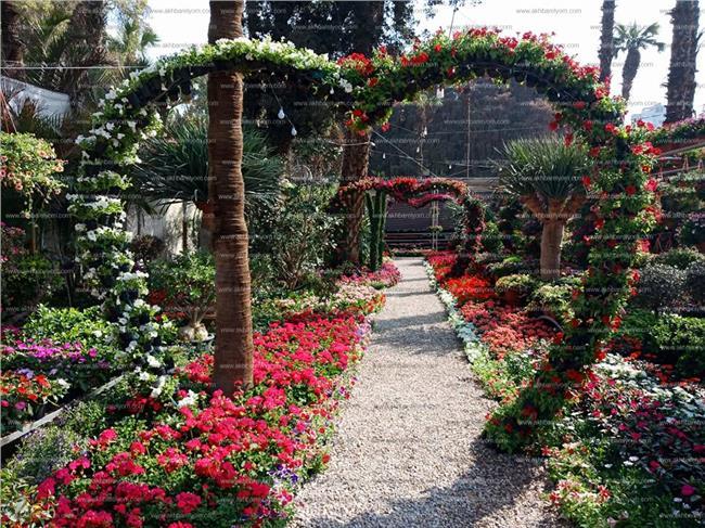 معرض الزهور الـ85 بحديقة الأورمان
