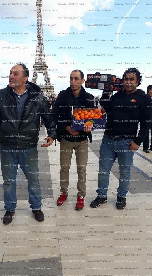 المصريون بفرنسا يوزعون الفاكهة