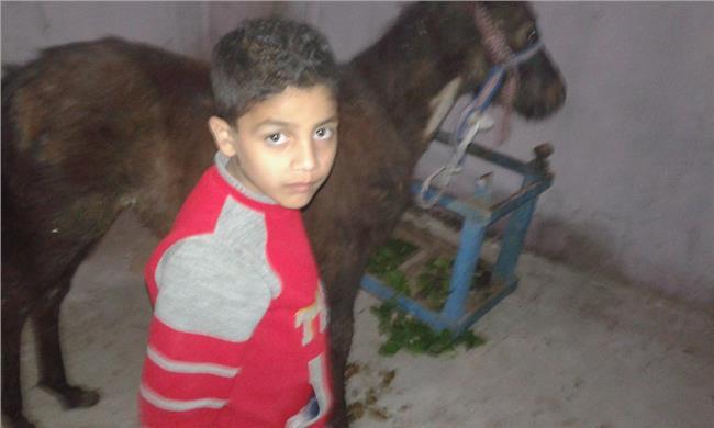 «محمد صلاح» يهدي حصانا لطفل الغربية المصاب بالسرطان