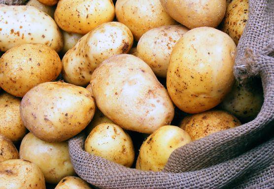 البطاطس المصرية