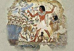الزهور في حياة المصريين القدماء
