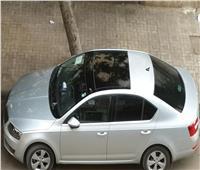 عقوبة جديدة لتركيب زجاج فاميه للسيارة