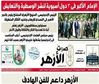 صحيفة «صوت الأزهر»