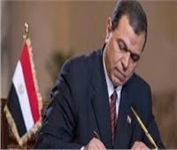محمد سعفان وزير القوى العامله