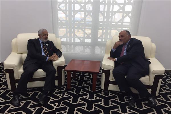وزير الخارجية يلتقي نظيره الليبي