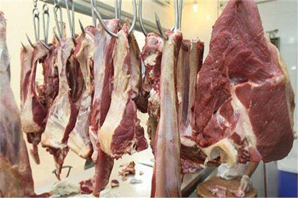 ثبات أسعار اللحوم بالأسواق اليوم