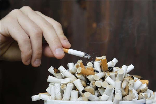 المصريون يدخنون سجائر بـ 200 مليون جنيها يوميا